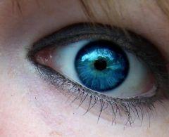 Новая видеокамера фиксирует даже цвет глаз